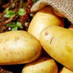 Nie bój się ziemniaków!