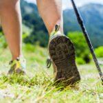 Ile spalimy kalorii uprawiając nordic walking?