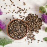 Które zioła odtruwają i regenerują wątrobę?