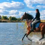 Jak jazda konna wpływa na sylwetkę?