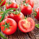 Pomidor a kalorie – sprawdź ile posiada!