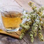 """Gojnik – właściwości """"górskiej herbaty"""" z Grecji"""