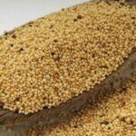 Mąka amaratusowa w kuchni – wykorzystanie, walory odżywcze