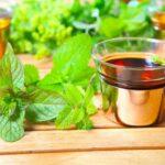 Właściwości lecznicze melisy