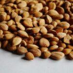 Pestki moreli – działanie, zastosowanie, wartości odżywcze