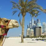 Największe atrakcje Dubaju, gdzie wszystko jest naj