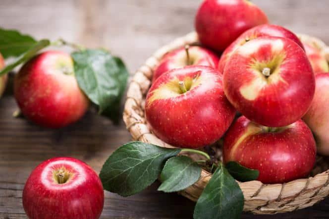 gf yfg7 QuEr BvqE dieta jablkowa zasady efekty ile mozna schundac 664x442 nocrop
