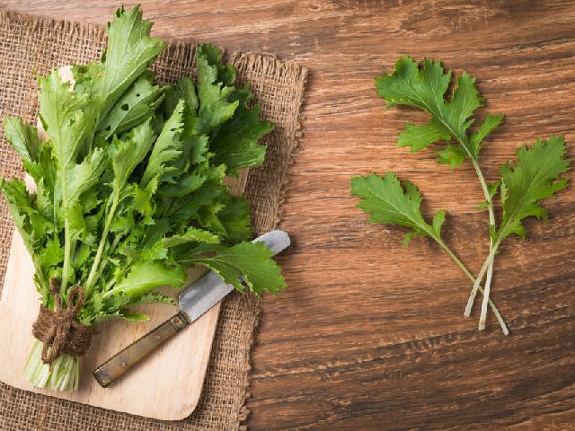 mizuna japonska salata wartosc odzywcza i zastos